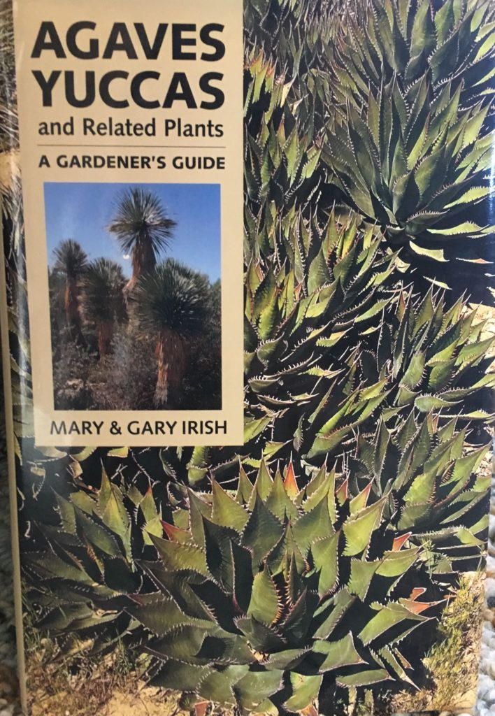 Agaves, Yuccas, and Related Plants