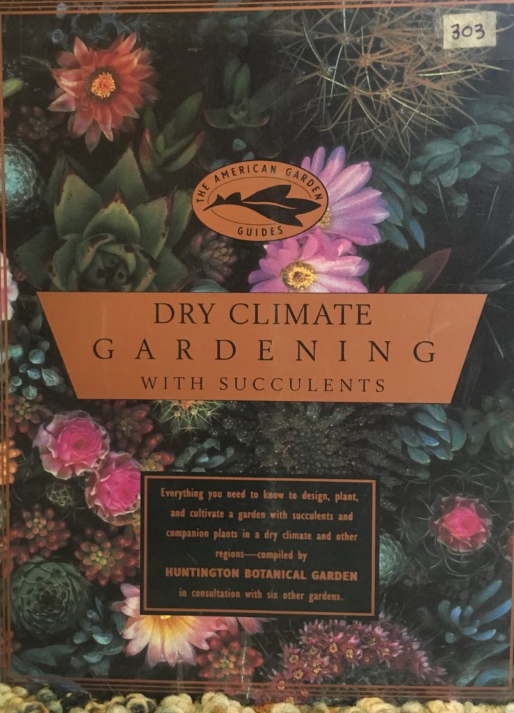 Dry Climate Gardening with Succulents